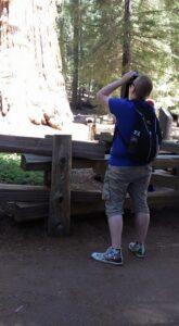 Sequoya Park General Sherman