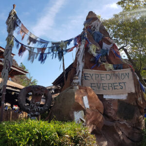 expedition-everest-7