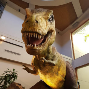 jurrasic-park_island-of-adventure-orlando-3