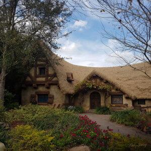 magic-kingdom-seven-dwarfs-house